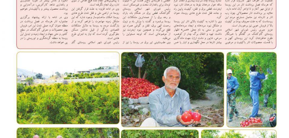 هفتهنامه طلوع جنوب – شماره ۷۴ – صفحه ۸
