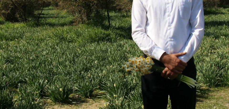 تامین آب نرگسزار جره از ۲۳ رشته قنات روستای محمدآباد + ویدئو