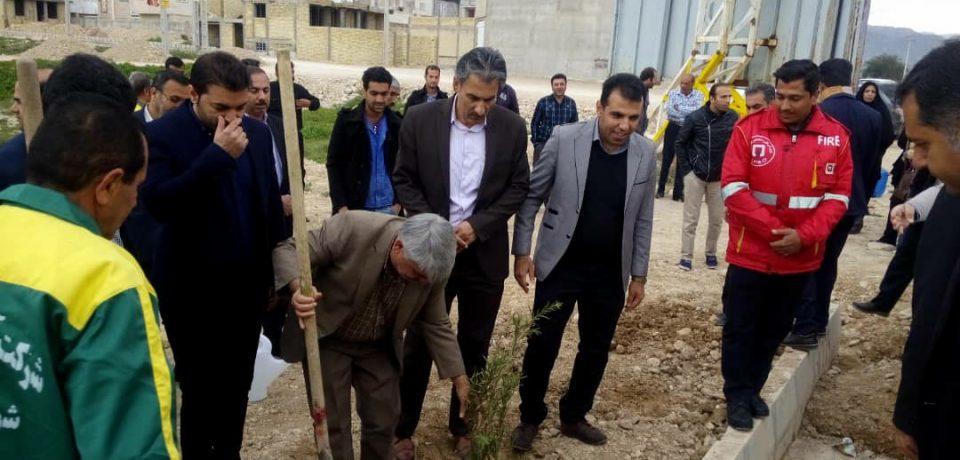 آیین کاشت بیش از ۳۰۰۰هزار اصله درخت در کازرون/ عکس: علی گلچین